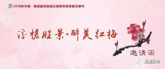 庙岗乡首届红梅节暨草莓采摘节隆重开幕